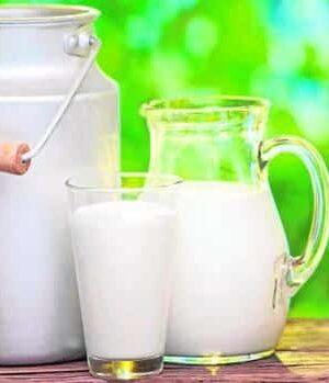 Γάλα Milk